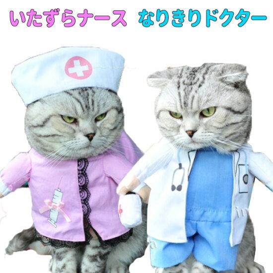 コスプレ・コスチューム・犬・猫・服・洋服・変身・仮装・看護婦・ナース