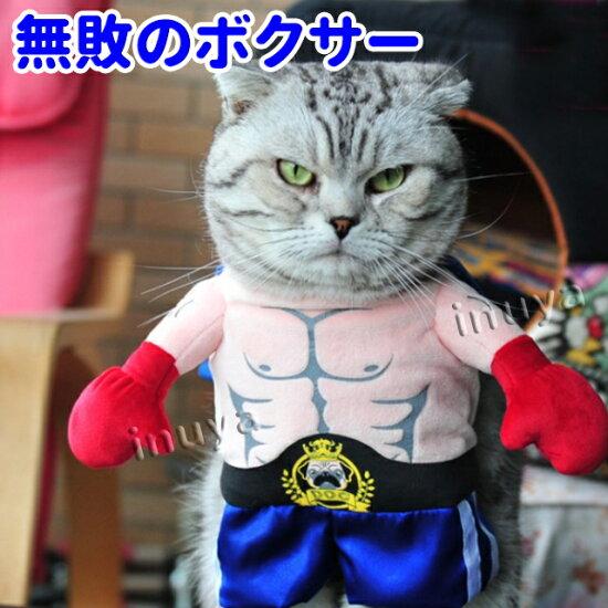 コスプレ・コスチューム・犬・猫・服・洋服・変身・仮装・ボクサー