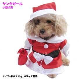 犬服 コスプレ サンタガール コスチューム 2足立ち Lサイズのみ 父の日 母の日 小型犬 ハロウィン グッズvセール ペット 洋服 おしゃれ 送料無料