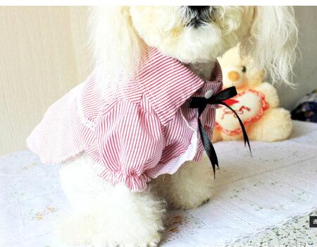 犬猫服フリルワンピースドレス(ピンクパープル)小型犬用【ダックス/トイプードル/チワワ/ポメラニアン/ヨーキー/洋服】