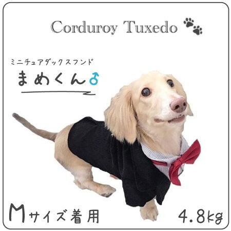 犬服小型犬フォーマル春夏秋冬HOOPETブランド結婚式披露宴パーティードレスシャツペット洋服