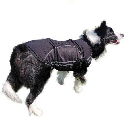 スリムフィット・ジャージ・犬服・ジッパー・メッシュ・ノースリーブ・小型犬・散歩・反射・日焼け止め・部屋着・春・夏