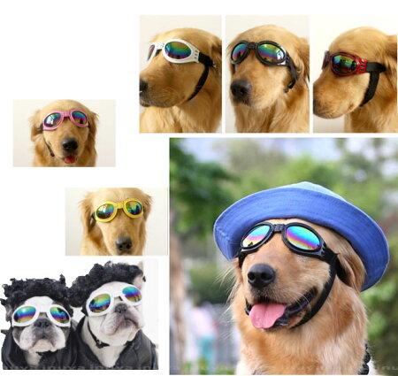 犬用サングラス(あご紐あり)ちょい悪グッズドッグメガネゴーグルアクセサリー小型犬/中型犬