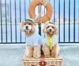 犬・麦わら・帽子・黒リボン・刺繍入り・小型犬・グッズ・春・夏・お出かけ・おしゃれ・涼しい・猫・犬屋