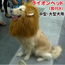 犬 ライオン ウィッグ キャップ カツラ 帽子 大型犬 コスプレ コスチューム ハロウィン グッズ 犬屋