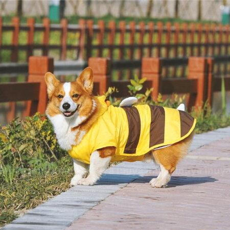 犬・レインコート・コスプレ・変身・コスチューム・蜂・ハチ・はち・コーギー・中型犬
