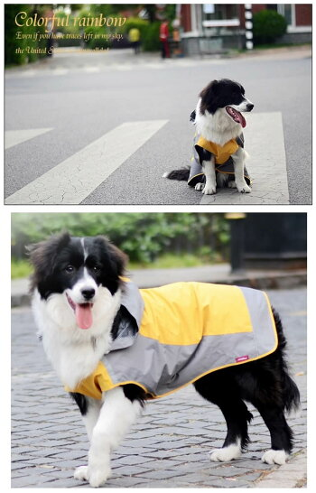 犬・レインコート・大型犬・中型犬・雨具・春夏秋冬・雪・ゴールデンレトリバー