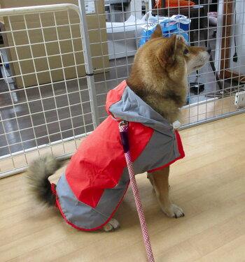 あす楽犬レインコート中型犬大型犬黄/緑/赤オリジナルレインウェア雨具カッパ柴犬フレブルラブラドールゴールデンなどに春夏秋冬簡単犬屋