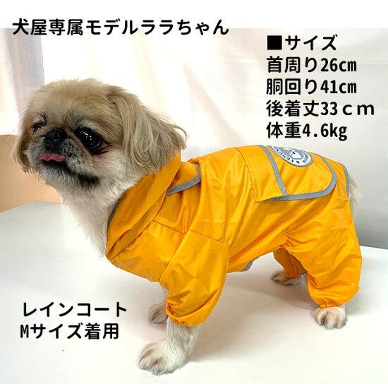 犬中型犬大型犬フルカバーレインコート【名入れオプション有り】レインウェア雨具カッパ柴犬フレブルラブラドールゴールデンなどに春夏秋冬簡単あす楽