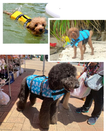 ペット用・犬用・ライフジャケット・小型犬・中型犬