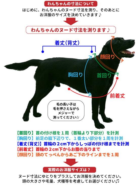 おもしろコメント犬服Tシャツ3L〜7Lサイズ中型犬犬屋いぬやドッグウェア