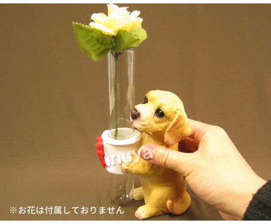 犬・ラブラドールレトリバー・花瓶
