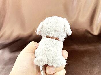 ぬいぐるみ・犬・キャンディーフォンテーヌ・お座り・ドッグ