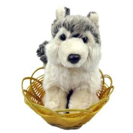 【 あす楽 】 シベリアンハスキー ぬいぐるみ 座り 小 カゴ入り 犬 おもちゃ お誕生日 ギフト プレゼント 犬屋 お祝い 敬老の日 クリスマス