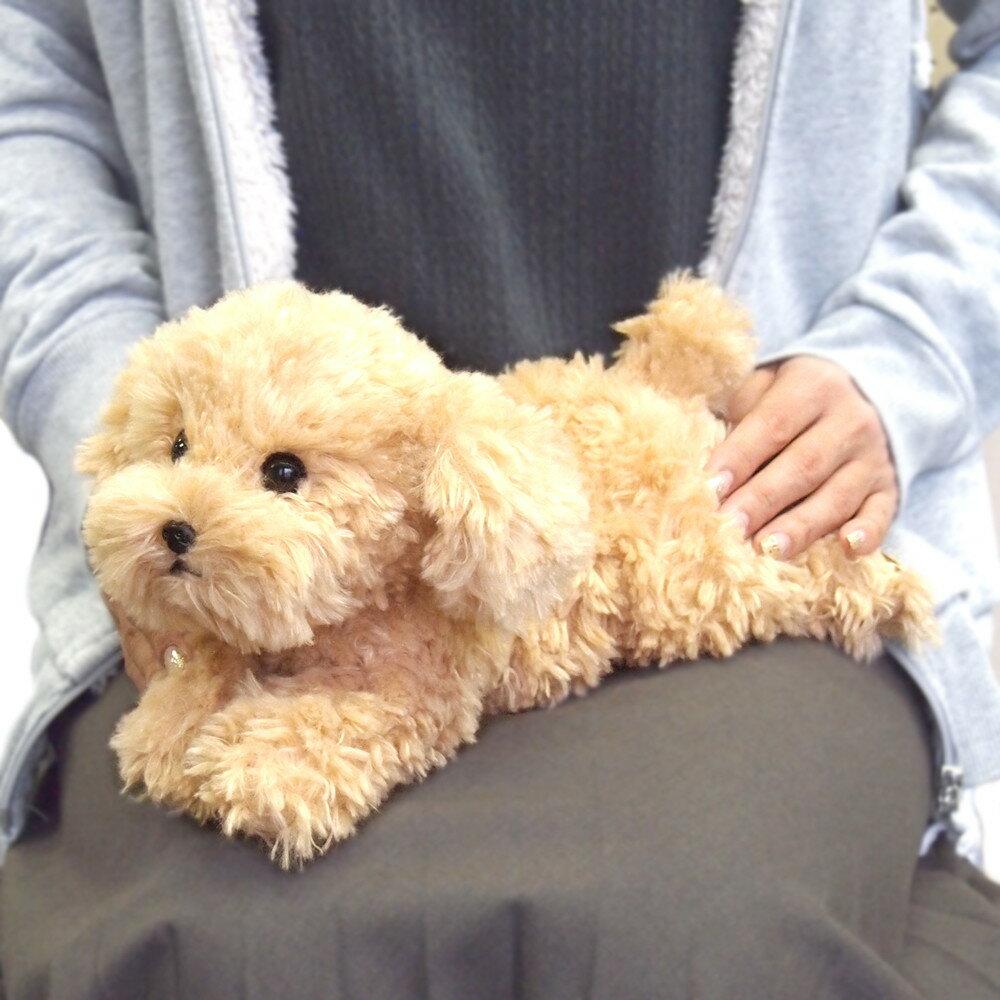 ひざわんこ 犬 ぬいぐるみ (トイプードル ベージュ) サンレモン 雑貨 ギフト プレゼント 母の日
