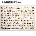 犬の系統図 ドッグジェネレーション ポスター 改定版 犬屋