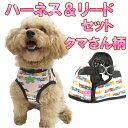 (犬用品 リード)(人気商品)クマさん柄が可愛いハーネス&カラーセット