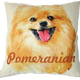 【あす楽】 クッション カバー と本体セット ポメラニアン 【 背景:白 Bタイプ】 45×45cm 雑貨 グッズ kingdogs 犬屋 いぬや ポメラニアンクッション