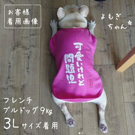 おもしろコメント中型犬犬服Tシャツ3L〜7Lサイズ犬屋オリジナルデザイン春夏(柴犬フレンチブルドッグフレブルコーギーラブラドルレトリバーゴールデンレトリバーなど)