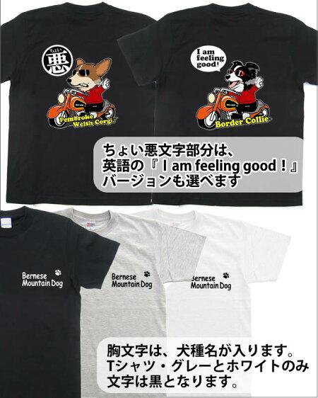 ちょい悪デザイン・オーナー用Tシャツ・ボーダーコリー