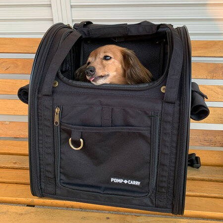 3WAYタッチインリュックMサイズランドキャリー[5527]犬キャリーバッグ耐荷重10kg猫小型犬ポンポリース向き犬用品キャリーケース送料無料