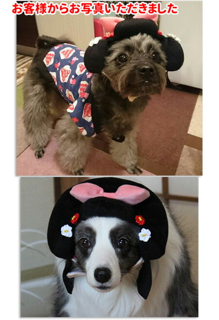 犬カツラお殿様お姫様LL(帽子キャップパーティーかぶりものコスプレ小型犬〜中型犬)ハロウィングッズ