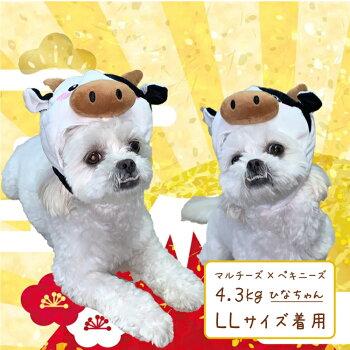牛LL(犬帽子キャップかぶりものコスプレ小型犬うしウシ)グッズ犬屋トイプードルシーズーシュナウザー柴犬などかぶり帽
