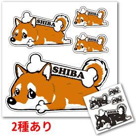 柴犬 犬 ステッカー 「カラー」くたいぬデザイン 犬屋 いぬや 送料無料