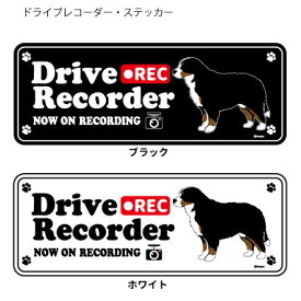 ドッグシルエット ドライブレコーダー ステッカー バーニーズ 3枚入1セット 犬 ドラレコ シール 犬屋 いぬや