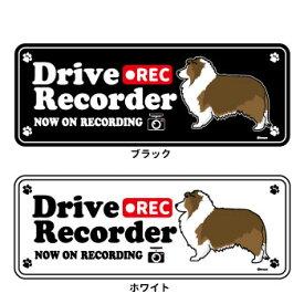 【 横向き 】 ドッグシルエット ドライブレコーダー ステッカー シェルティー 【 茶白 】 カラー:セーブル 3枚入1セット 犬 ドラレコ シール シェットランドシープドッグ ドッグシルエット 犬屋 いぬや 送料無料
