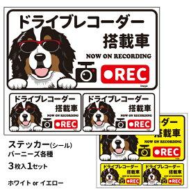 グラサン ドライブレコーダー ステッカー バーニーズ 長方形 3枚入1セット 大15cm 小6.5cm シール 犬屋 オリジナル 犬 ドッグ ドラレコ