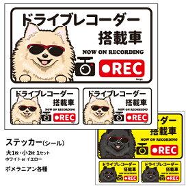 グラサン ドライブレコーダー ステッカー ポメラニアン 長方形 3枚入1セット 大15cm 小6.5cm シール 犬屋 オリジナル 犬 ドッグ ドラレコ 送料無料