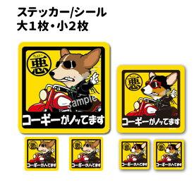 犬 車 ステッカー コーギー 犬 ちょい悪 正方形セット 犬屋 いぬや 送料無料