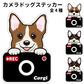 コーギー ステッカー カメラドッグ 犬 犬屋 いぬや ドライブレコーダー 可愛い かわいい 車用 ドラレコ あおり運転 防止 窓 録画 おでかけ 送料無料