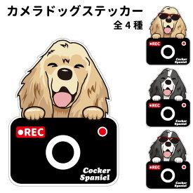 コッカースパニエル ステッカー カメラドッグ 犬 犬屋 いぬや ドライブレコーダー 可愛い かわいい 車用 ドラレコ あおり運転 防止 窓 録画 おでかけ 送料無料