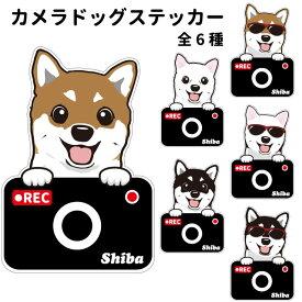 柴犬 ステッカー カメラドッグ 犬 犬屋 いぬや ドライブレコーダー 可愛い かわいい 車用 ドラレコ あおり運転 防止 窓 録画 おでかけ