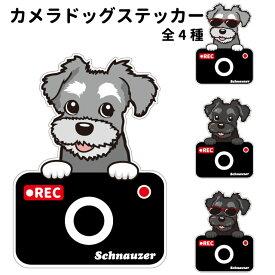 シュナウザー ステッカー カメラドッグ 犬 犬屋 いぬや ドライブレコーダー
