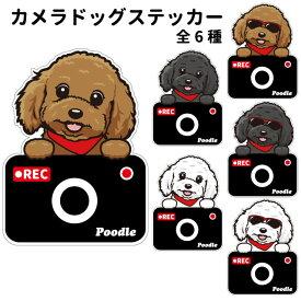 プードル ステッカー カメラドッグ 犬 犬屋 いぬや ドライブレコーダー