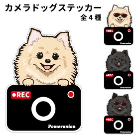 ポメラニアン ステッカー カメラドッグ 犬 犬屋 いぬや ドライブレコーダー 可愛い かわいい 車用 ドラレコ あおり運転 防止 窓 録画 おでかけ 送料無料
