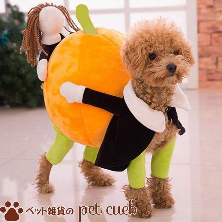 【メール便不可】ハロウィン かぼちゃを運びましょ♪【犬 服 猫】【トイプードル 人気 オシャレ チワワ】【ハロウィン コスプレ 仮装 カボチャ かぼちゃ 二足歩行 着ぐるみ】