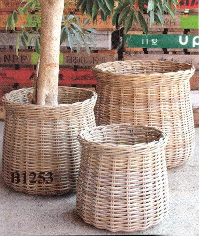 送料無料 ラタン鉢カバー B1253観葉植物 モダン ナチュラル インテリアグリーン   おしゃれ 人気 引越し祝い 開店祝い 新築祝い 結婚祝い お祝い 観葉植物通販