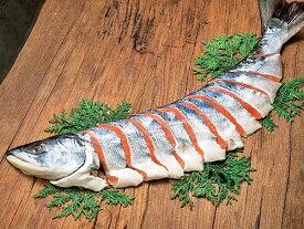 鮭山漬 雄宝(ゆうほう)姿切身 半身 約1.3kg 中辛タイプ送料無料 北海道 雄武産