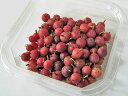 【送料無料】 北海道産グーズベリー(生果実)500g(グスベリ グースベリー)8月上旬から発送開始