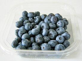 ブルーベリー(冷凍果実) 2kg(250g×8)送料無料 北海道産