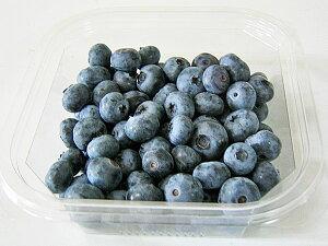 ブルーベリー(冷凍果実) 2kg(250g×8)送料無料 北海道産【沖縄県、一部離島は別途追加送料500円を加算させていただきます。】