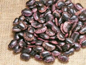 (12月下旬入荷)紫花豆 1kg 北海道産むらさきはなまめ