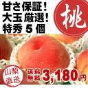 桃特秀 5個 ●山梨の桃●お中元●送料無料●糖度12度以上●大玉