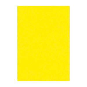 (業務用セット) 文運堂 ニューカラーR 八ツ切 横271×縦392mm 8NCR-319 レモン 100枚入 【×2セット】 送料込!