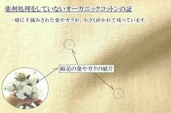 オーガニックコットン綿カス
