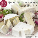 北海道カマンベールチーズの老舗 選べる生カマンベールチーズ2種セット (カレ・ロワレ・おいこみブルー) 【送料無料】